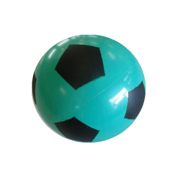 PVC Ball Number 5