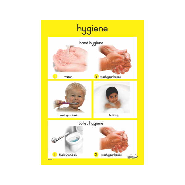 Theme - Hygiene  - A3 Single Chart