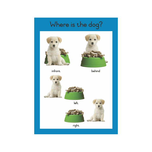 Wall Chart Where is the Dog? - A2