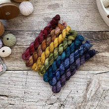 Load image into Gallery viewer, Nimble Sock Mini Skein Set by ontheround