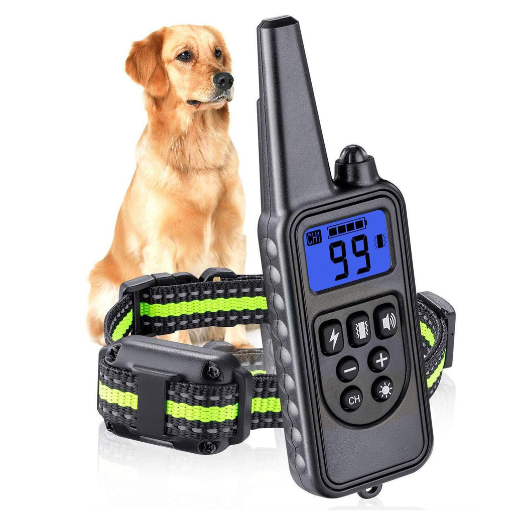 small dog shock collar