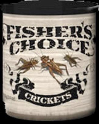 Timbuktu Fisher'S Choice Bait  Lures - Bait Timbuktu - Hook 1 Outfitters/Kayak Fishing Gear