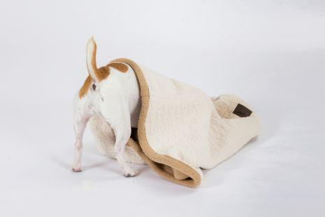 3-IN-1 Cream Burrow Dog Bed  Pet Tall Tails - Hook 1 Outfitters/Kayak Fishing Gear