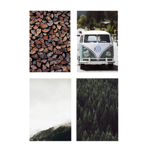 Moody VW Collection