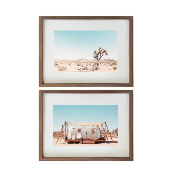 Joshua Tree Desert Collection