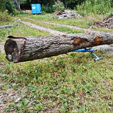 Logrite Stand Being Used With Hook to Elevate Log