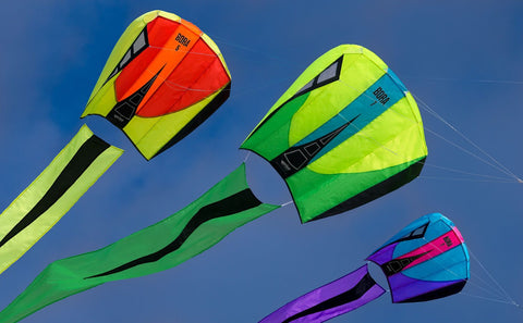 Bora 5 Single Line Kite