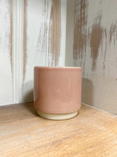 Load image into Gallery viewer, Peperomia Punto Grigio in Pale Pink Gloss Pot