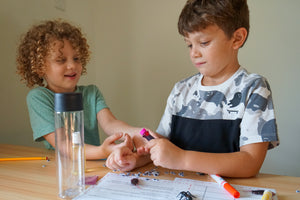 homeschool science activity