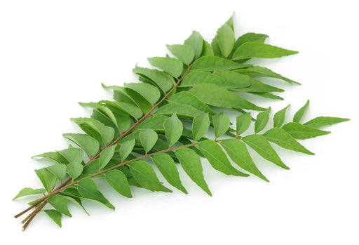 Curry Leaves Raw (200 -280 GM)