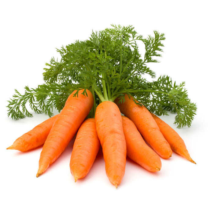 Carrot Ooty Raw (1 KG)