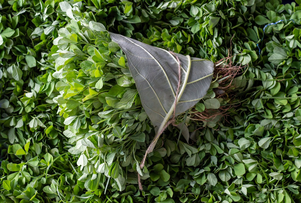 Menthya Leaves (200 -280 GM)