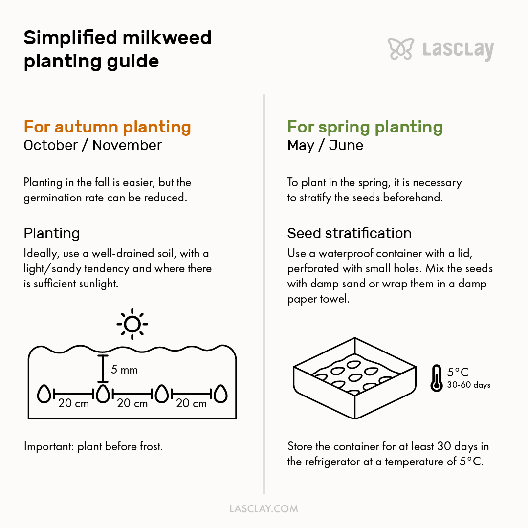 PNG version of Simplified milkweed planting guide by Lasclay