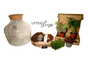 Kit Terrarium DIY Jungle Chic – Niveau 1 (facile)