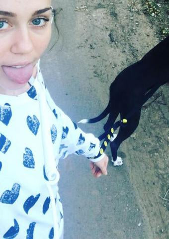 Miley Cyrus in Michael Lauren Clothing