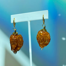 Load image into Gallery viewer, S P I C Y Earrings