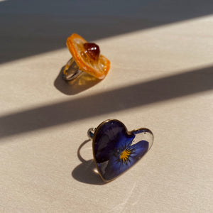 Fruity and Floral Rings