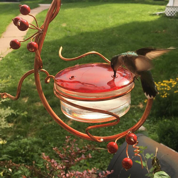 Red Berries Hummingbird Feeder - Buy 2 Free Shipping
