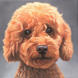 paintmyfurkids hand-painted pet portrait oil painting brown poodle