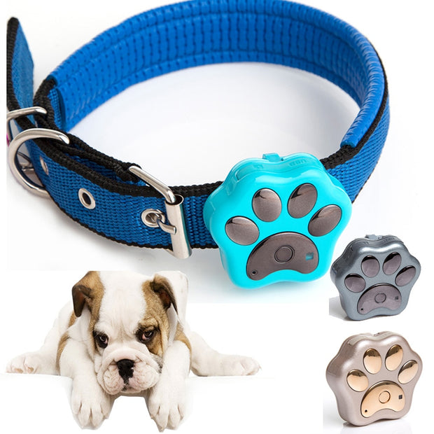 Pet Collar with GPS Tracker