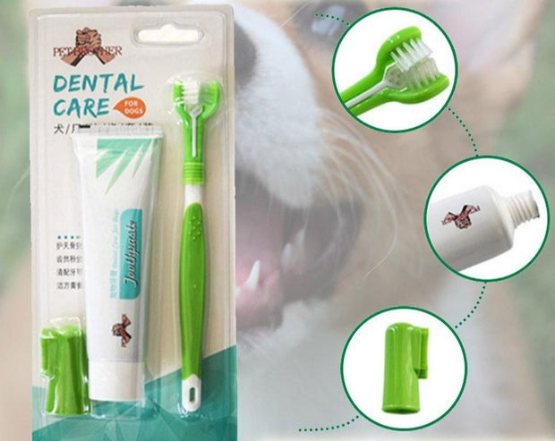 Toothbrush And Toothpaste  Pets