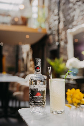Edinburgh Castle Gin and On the Rocks with a Twist cocktail