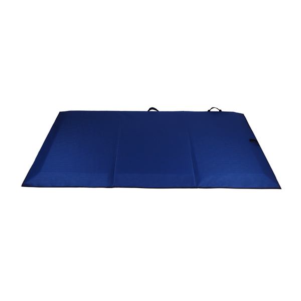 Ausnew Home Care Disability Services Bevelled Edge Bedside Safety Crash Mat | NDIS Approved, mount druitt, rooty hill, blacktown, penrith