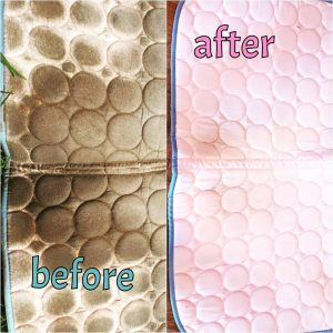 Before & After Saddle Pad