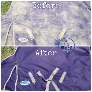 Before & After Blanket. Blanket Safe horse blanket, pet wear and pet accessory safe laundry soap. Pet Safe. Blanket Safe by RugSafe USA, llc
