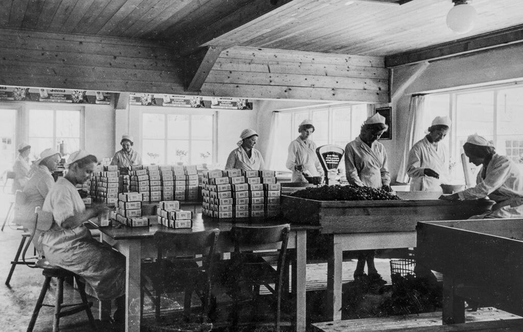 Black and white photo of women working in a production facility
