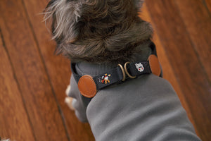 Adventure Harness Gotham(Deep Charcoal)