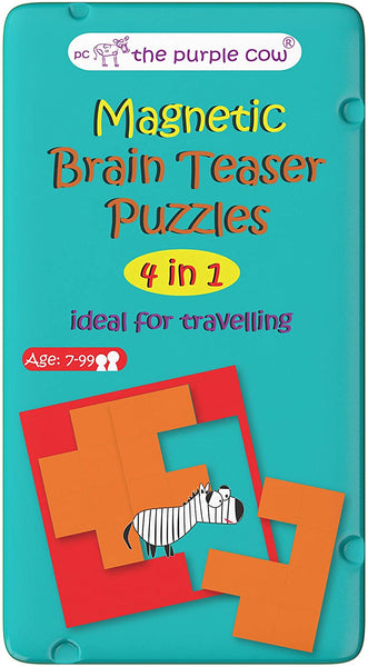 Magnetic Brain Teasers