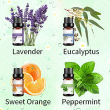 Load image into Gallery viewer, 16 x10ml Natural Essential Oil Set