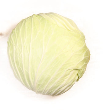 Asian Softキャベツ(Cabbage) Cut