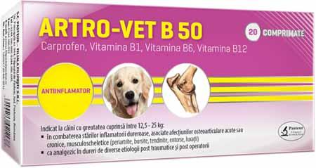 Artro Vet B 50 CARPROFEN Joint Anti-inflammatory Nonsteroidian for Dogs - Carpofren for Inflammations and Pain - Pet Shop Luna SRL