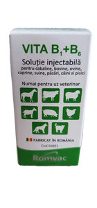 Vitamina B1+B6 2x 20ml for horses, cattle, sheep, goats, swine, pet (dogs and cats) - Pet Shop Luna SRL