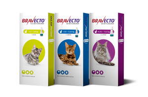 BRAVECTO® Spot-on for cats all sizes - Pet Shop Luna SRL