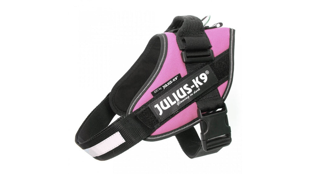 IDC Power Dog Harness Julius K9, PINK / Pettorina Julius k9 per cani - Pet Shop Luna SRL