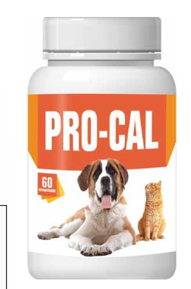 Pro-Cal 60 tablets Growth promoter in dogs and cats in the first 14 months of life, and in adult animals during pregnancy and lactation - Pet Shop Luna SRL