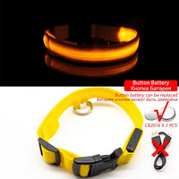 Collar for dogs USB Charging Led Anti-Lost/Avoid Car Accident / Collare per cani illuminato - Pet Shop Luna SRL