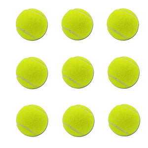 Tennis Ball For iFetch Interactive Tennis Launchers and iFetch 'n' Treat - Pet Shop Luna SRL