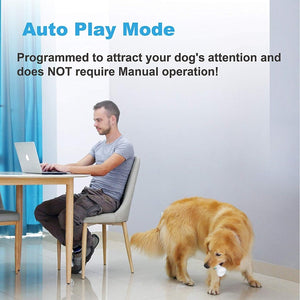 Wickedbone Interactive & Automatic Dog Bone, Gaming Toy for Dogs and Puppies - Pet Shop Luna SRL