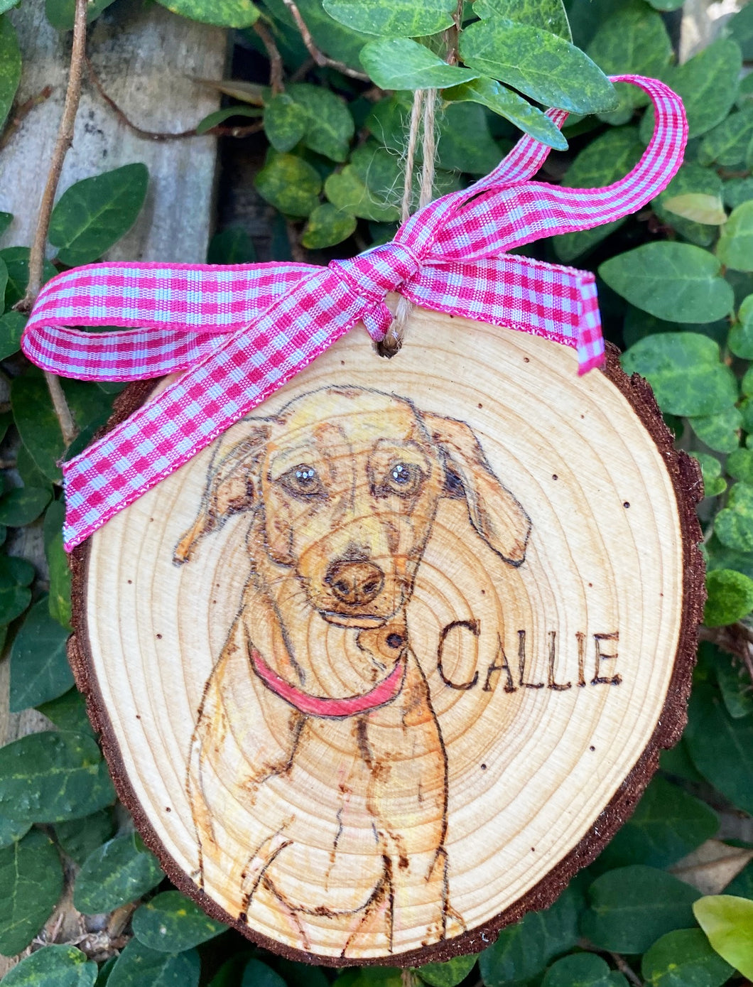 Colored & Wood Burned Pet Portrait Ornament (Round)
