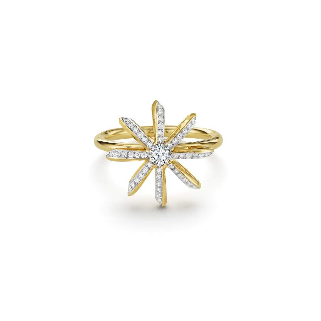 Southern Star Collection Ring
