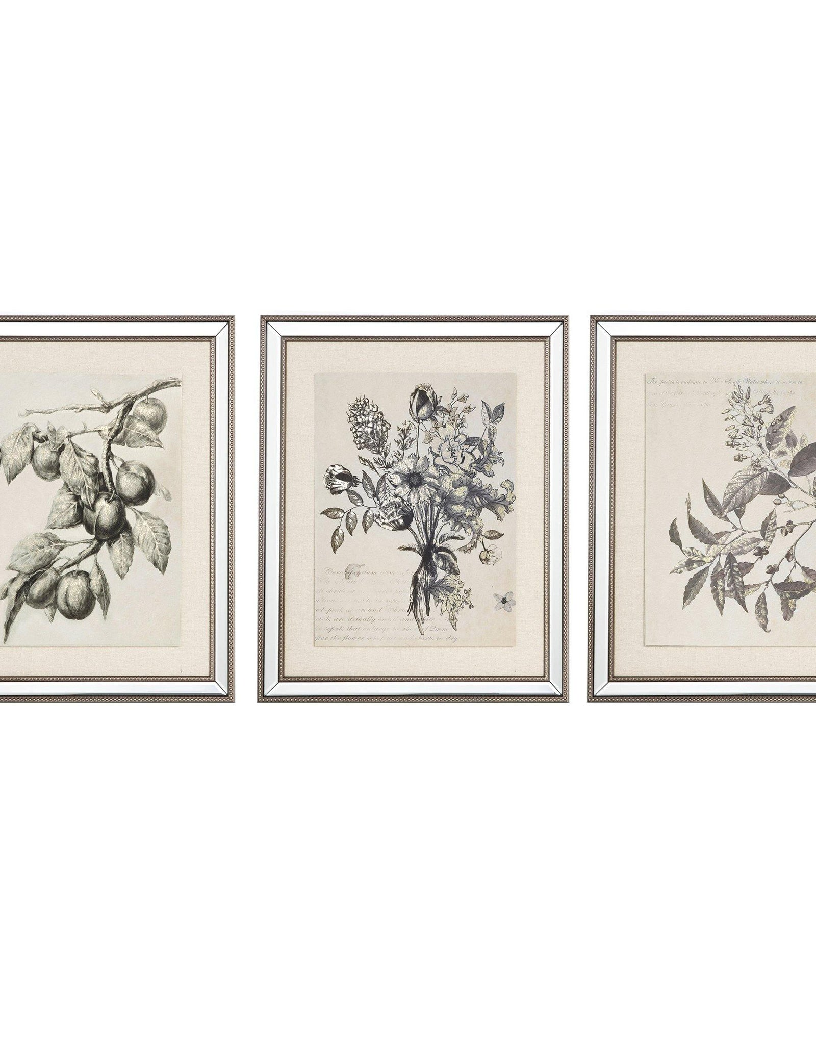 Spring Prints Set/3 - HUA098 - Mindy Brownes Interiors - Genesis Fine Arts
