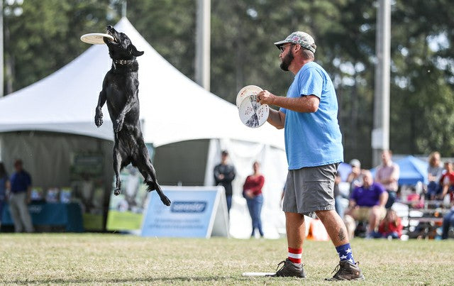 RevitaVet Sponsors Two Unique Dog Agility Teams!