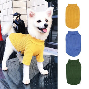 solid sweater dog tees