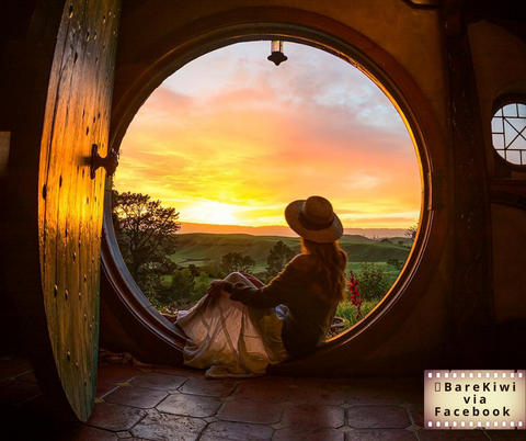 bare kiwi's hobbit hole photo with photo credit to their facebook page