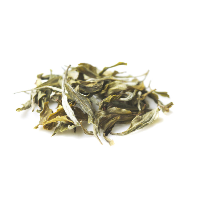 Blue Mountain Nilgiris White Tea - Loose Tea
