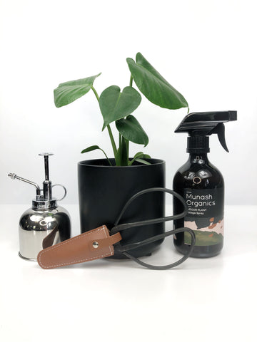 Garner Plant Delivery Green Thumb plant gift hamper   indoor plant mister spray   indoor plant cutters   indoor plant foliage organic spray   potted monstera house plant   same day plant gift delivery melbourne